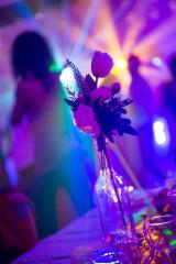 Vue de la salle de réception du Gîte lors d'une soirée dansante